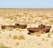 How the  Aral Sea  Will Look Like in Foreseeable Future