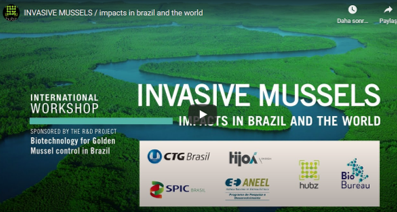 INVASIVE MUSSELS / impacts in Brazil and the World