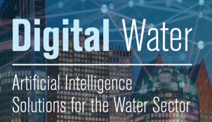 Digital Water: Artificial Intelligence Solutions for the Water Sector