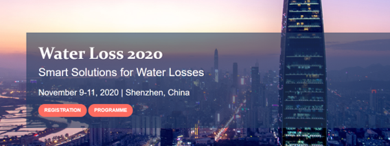 IWA Conference Water Loss 2020 _ Smart Solutions for Water Losses  09_11 November 2020 | Virtual conference