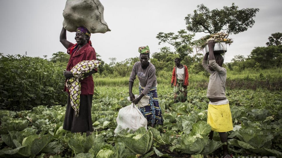 Covid_19 and Global Food Security: One Year Later