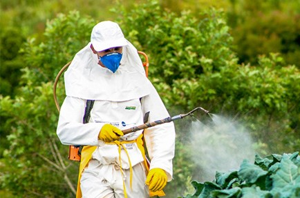 64 of global agricultural land at risk of pesticide pollution